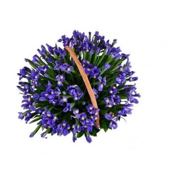 Laimės pintinė – Gėlės į namus Vilniuje