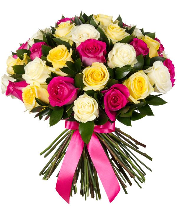 Rožinis trio – Gėlės į namus Vilniuje