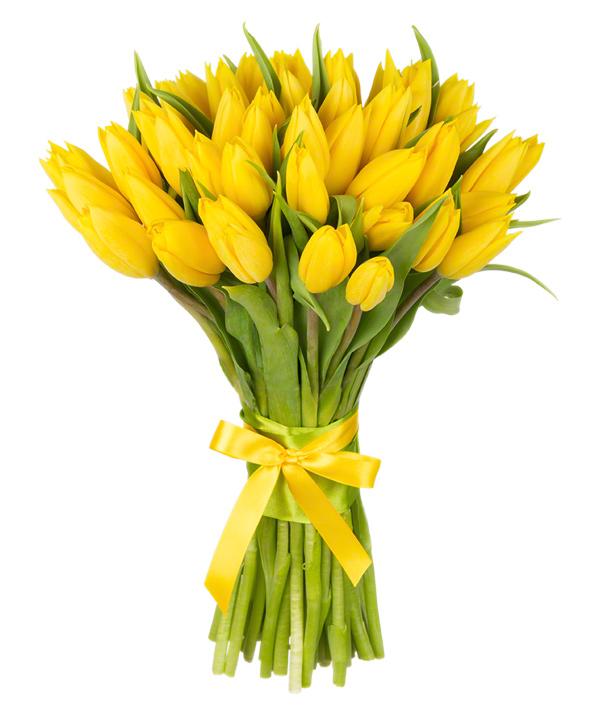 Saulėta diena – Gėlės į namus Vilniuje