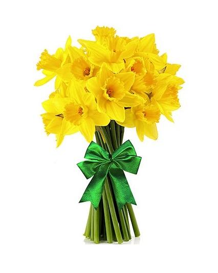 Narcizai – Gėlių pristatymas Vilniuje