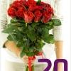 Rožės 20 vnt.
