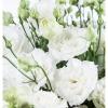 Eustomos – Gėlės į namus Vilniuje