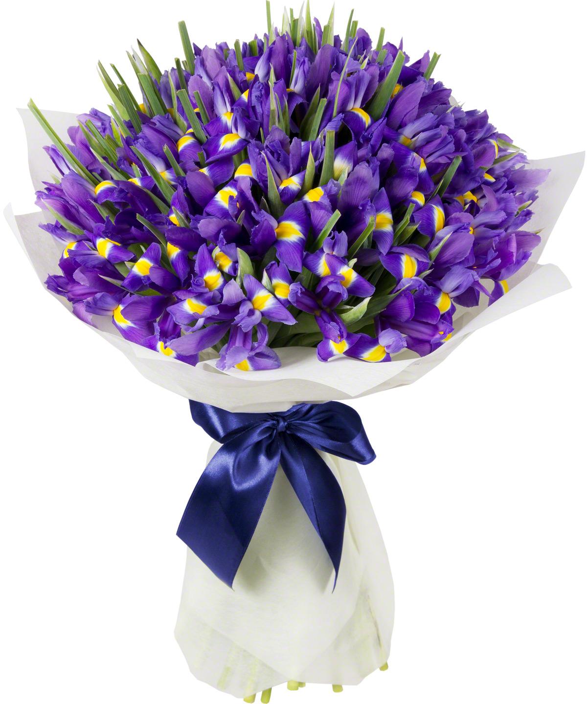 Ирис цветы букет фото