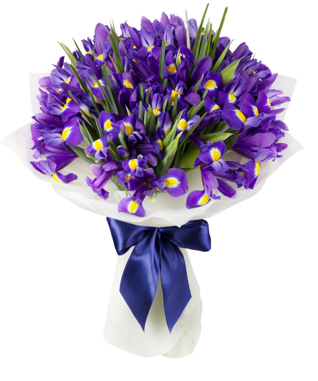 Ирисы фото цветов букет