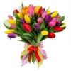 Тюльпаны «Микс» 3