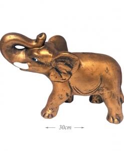 Dramblys taupyklė