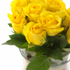 Желтые розы 3